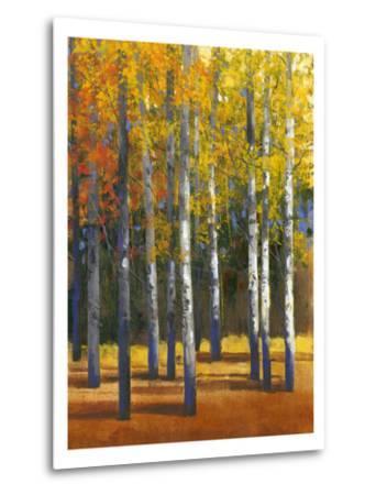Fall in Glory I-Tim O'toole-Metal Print