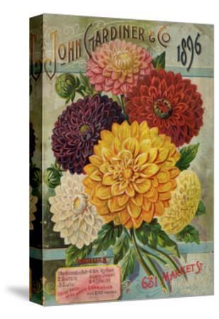 Seed Catalogues: John Gardiner and Co, Philadelphia, Pennsylvania. Seed Annual, 1896--Stretched Canvas Print