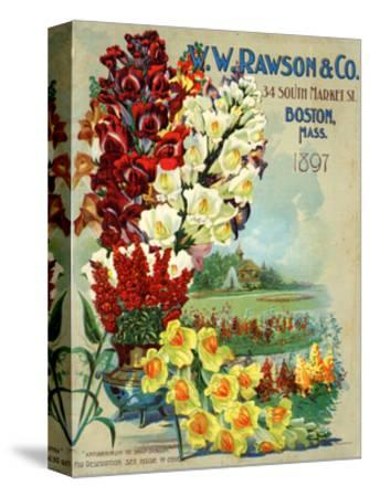 Seed Catalog Captions (2012): W.W. Rawson and Co, Boston, Massachusetts, 1897--Stretched Canvas Print