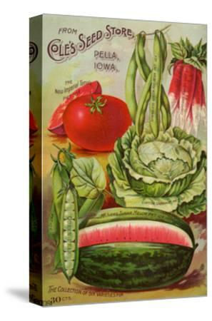 Seed Catalog Captions (2012): Cole's Seed Store, Pella, Iowa, Garden, Farm and Flower Seeds, 1896--Stretched Canvas Print