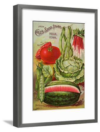Seed Catalog Captions (2012): Cole's Seed Store, Pella, Iowa, Garden, Farm and Flower Seeds, 1896--Framed Premium Giclee Print