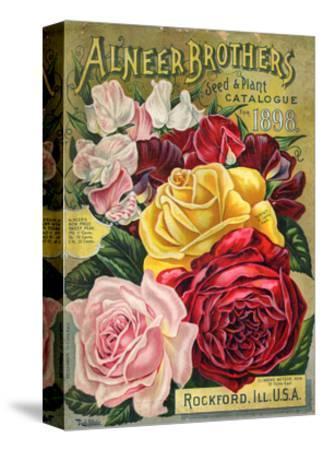 Alneer Brothers Seed and Plant Catalogue, 1898--Stretched Canvas Print