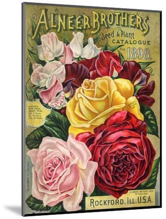 Alneer Brothers Seed and Plant Catalogue, 1898--Mounted Premium Giclee Print