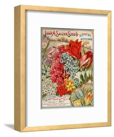 John A. Salzer Seed Co. Autumn 1895--Framed Premium Giclee Print