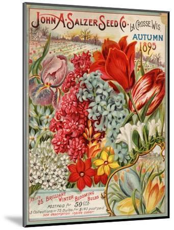 John A. Salzer Seed Co. Autumn 1895--Mounted Premium Giclee Print
