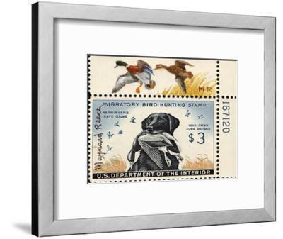 National Postal Museum: 3 Dollar Duck Stamp Remarque--Framed Premium Giclee Print