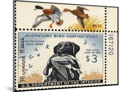 National Postal Museum: 3 Dollar Duck Stamp Remarque--Mounted Premium Giclee Print