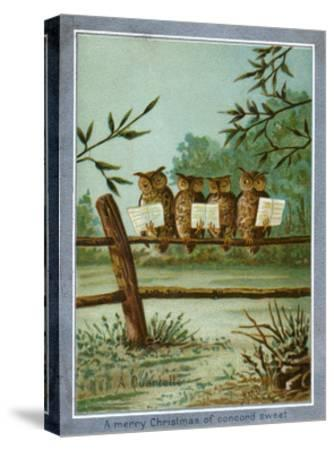 Center Warshaw Collection of Business Americana Series: A Quartette of 4 Owls on fence--Stretched Canvas Print