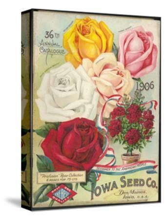Seed Catalog Captions (2012): Iowa Seed Co. Des Moines, Iowa. 36th Annual Catalogue, 1906--Stretched Canvas Print