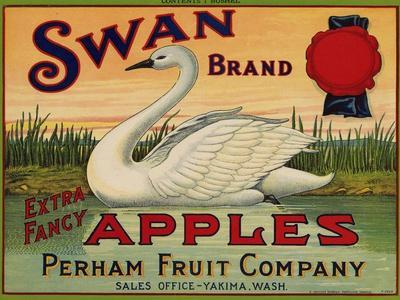 Fruit Crate Labels: Swan Brand Extra Fancy Apples; Perham Fruit Company--Stretched Canvas Print