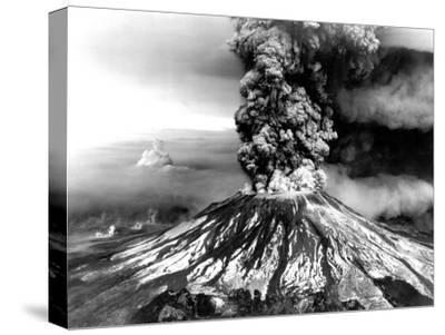 Mount St. Helens on the First Day of Eruption on May 18 1980--Stretched Canvas Print