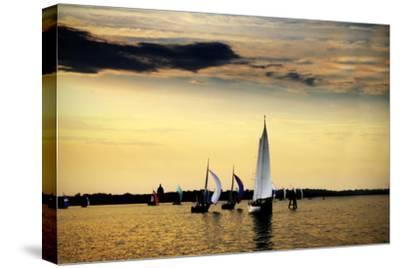 Sailing Home II-Alan Hausenflock-Stretched Canvas Print