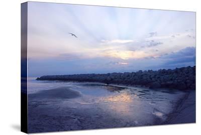 Cedar Island Sunrise-Alan Hausenflock-Stretched Canvas Print
