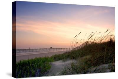 Rosey Sunset I-Alan Hausenflock-Stretched Canvas Print