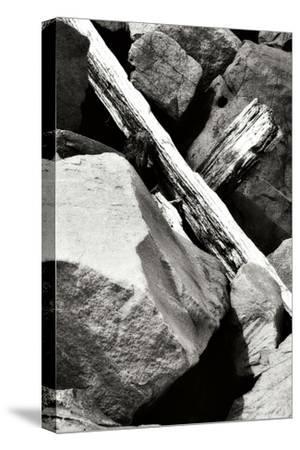 Rocks and Wood II BW-Alan Hausenflock-Stretched Canvas Print