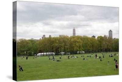 Spring in Central Park-Erin Berzel-Stretched Canvas Print