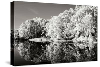 Cherokee Lake I-Alan Hausenflock-Stretched Canvas Print