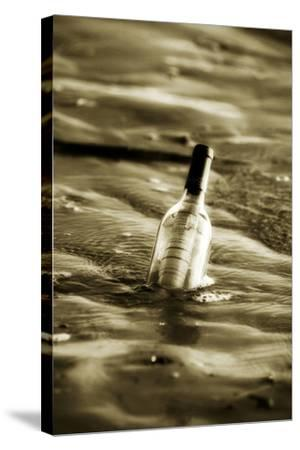 Message in a Bottle II-Alan Hausenflock-Stretched Canvas Print