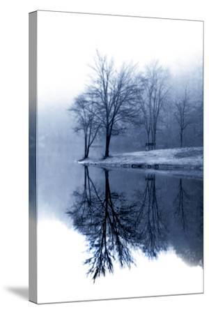 Fog on the Lake I-Alan Hausenflock-Stretched Canvas Print