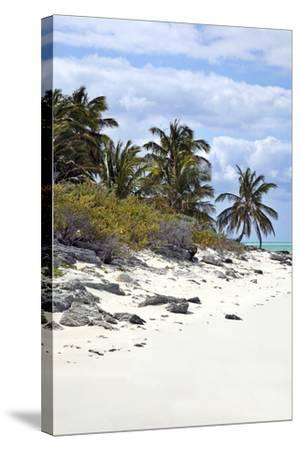 Schooner Cay Coastline-Larry Malvin-Stretched Canvas Print