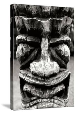 Totem II-Brian Moore-Stretched Canvas Print