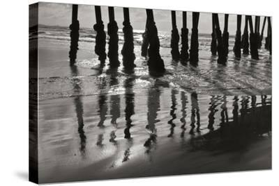 Pier Pilings 13-Lee Peterson-Stretched Canvas Print