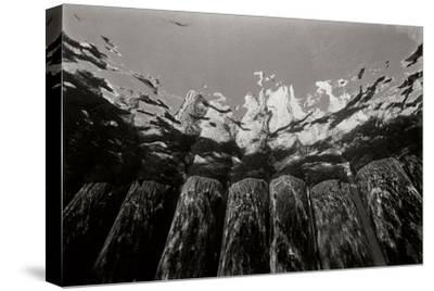 Pier Pilings 1-Lee Peterson-Stretched Canvas Print