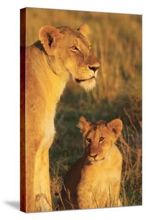 My Mom and I-Susann Parker-Stretched Canvas Print
