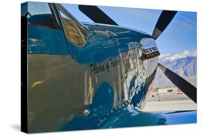 Aviation II-Lee Peterson-Stretched Canvas Print