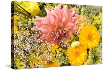 Summer Bouquet I-Maureen Love-Stretched Canvas Print