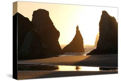 A Bird Atop the Rock Monoliths Known As Sea Stacks At Twilight-Charles Kogod-Stretched Canvas Print