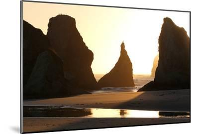 A Bird Atop the Rock Monoliths Known As Sea Stacks At Twilight-Charles Kogod-Mounted Photographic Print
