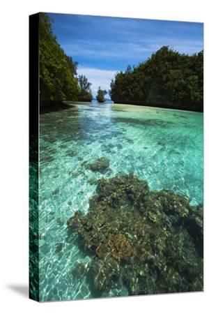 Limestone Island Formations Shaped By Wind and Water-Stephen Alvarez-Stretched Canvas Print