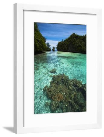 Limestone Island Formations Shaped By Wind and Water-Stephen Alvarez-Framed Photographic Print