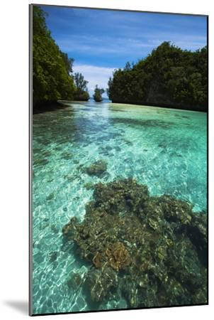 Limestone Island Formations Shaped By Wind and Water-Stephen Alvarez-Mounted Photographic Print