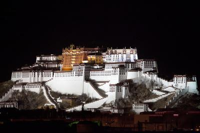 Potala Palace At Night-Kent Kobersteen-Stretched Canvas Print