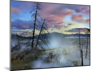 Steam Rising From Travertine Formations, Minerva Terrace, Mammoth Hot Springs, Yellowstone-Tim Fitzharris-Mounted Photographic Print