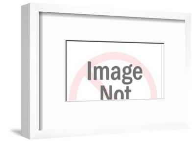 Seafood Dinner-Pop Ink - CSA Images-Framed Art Print