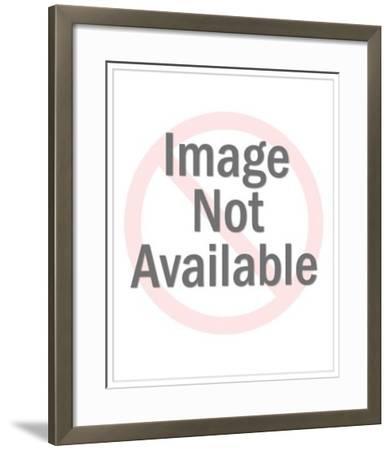Hanging Lamps-Pop Ink - CSA Images-Framed Art Print