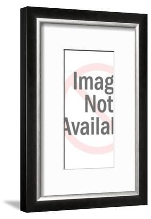 Man Doing Own Plumbing Work-Pop Ink - CSA Images-Framed Art Print
