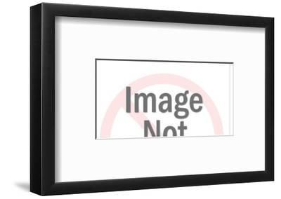 Cat Chasing Dog-Pop Ink - CSA Images-Framed Art Print