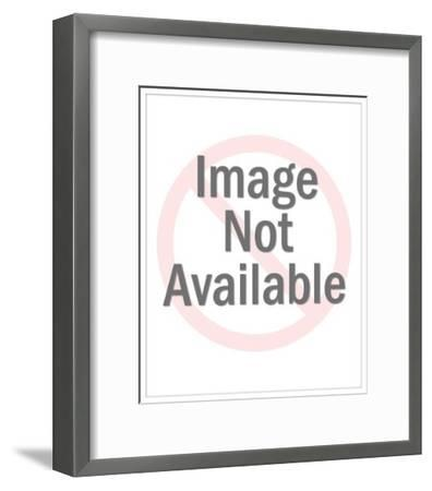 Man Mowing Lawn-Pop Ink - CSA Images-Framed Art Print