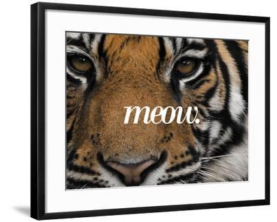 Meow-Thorsten Milse-Framed Art Print
