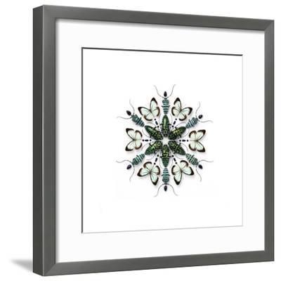 Elegans Prism-Christopher Marley-Framed Photographic Print