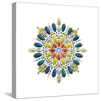 Chrysina Prism-Christopher Marley-Stretched Canvas Print
