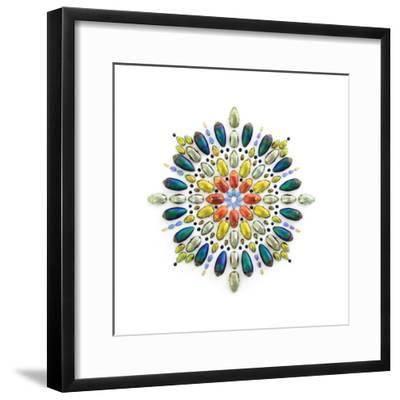 Chrysina Prism-Christopher Marley-Framed Photographic Print