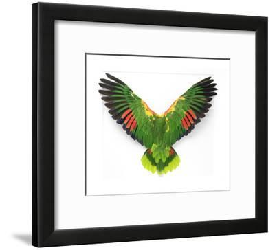 Double Yellow Headed Amazon-Christopher Marley-Framed Photographic Print
