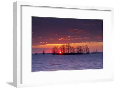 A Colorful Sunrise Over Silhouetted Cypress Trees in Lake Mattamuskeet-Robbie George-Framed Photographic Print