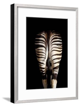 A Male Okapi, Okapia Johnstoni-Joel Sartore-Framed Photographic Print