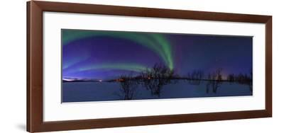 Aurora Borealis, with Jupiter and Venus in a Rare Close Conjunction-Babak Tafreshi-Framed Photographic Print